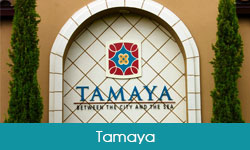 Luxury Communities Tamaya